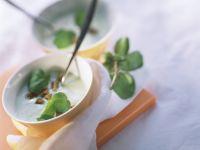 Cremige Brunnenkressesuppe mit Croutons Rezept