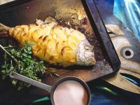 Dorade im Kartoffelmantel gebacken Rezept
