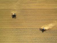Dürre-Report: unterdurchschnittliches Erntejahr!