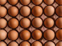 Rückruf von Bio-Eiern: Mehrere Supermärkte betroffen