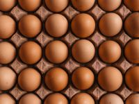 Eier und Fleisch erhöhen das Schlaganfallrisiko