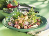 Fleischwurstsalat mit Rettich und Rucola Rezept