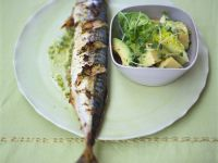 Gebackene Makrele mit Avocado-Salat Rezept