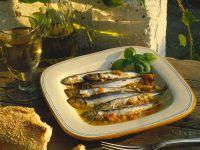 Gebackene Sardinen Rezept
