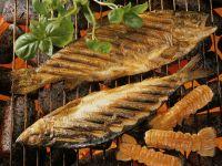 Gegrillte Kräuterfische und Garnelen