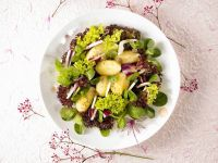 Gemischter Blattsalat mit Frühkartoffeln Rezept