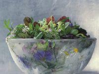 Gemischter Salat mit Essblüten und Wildkräutern Rezept