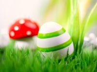 Vom Glücksbringer zum Küchen-Klassiker: die Geschichte vom Ei
