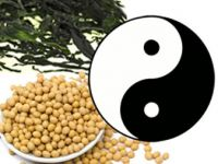 Makrobiotik: schlank mit Yin und Yang?