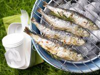 Sardinen-Rezepte