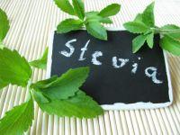 Stevia ab sofort als Zuckerersatz erlaubt