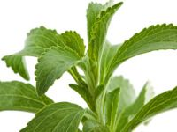 Ist Stevia gesunder Zucker?