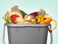Wie wir unsere Lebensmittel verschwenden