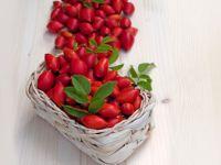 Wilde Früchte - Vitamine vom Wegesrand