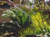 7 Helfer: So machen Sie Ihren Garten frühlingsfit