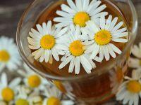 Pflanzengift in Tee nachgewiesen