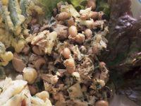 Kichererbsen-Stockfisch-Salat Rezept