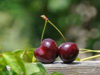 7 Gründe: Darum sind Kirschen gesund