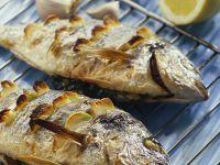 Knoblauch-Doraden vom Grill Rezept