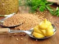 Kochen mit Senf – von klassisch bis edel