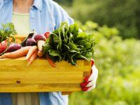 Leichte Frühlingsküche: Lust auf gesunden Genuss