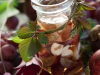 Likör mit Mangostanen Rezept