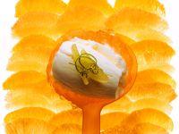 Limetteneis mit Orangen Rezept
