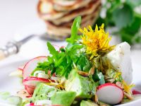 Löwenzahn-Avocadosalat