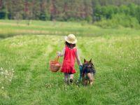 Schneller Genuss: 10 Leckereien für den Picknickkorb