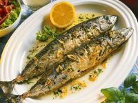 Makrele mit Knoblauch Rezept