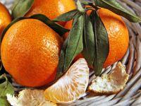 Mandarinen regen Stoffwechsel an