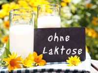 Milch ohne Laktose