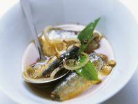 Ölsardinen in Marinade aus Zwiebeln und Balsamessig Rezept