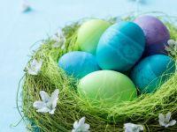 Osternest mit bunten Eiern Rezept