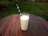 Vollmilch oder fettarme Milch für Kinder?