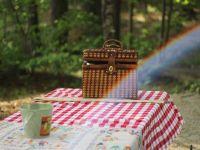 So wird das Picknick zur Mädels-Party