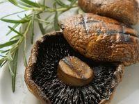 Portobello-Speisepilz-Rezepte