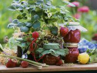 Rhabarber-Erdbeerkonfitüre Rezept