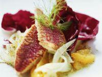 Rotbarbe mit fruchtigem Fenchelsalat Rezept