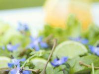 Rucolasalat mit Borretschblüten Rezept
