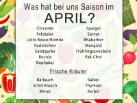 Was hat Saison im April?