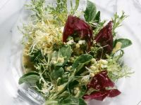 Salat mit Eiervinaigrette Rezept
