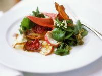 Salat mit Hummer und Gemüsechips Rezept