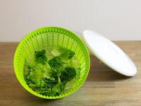 Der Salatschleuder-Test