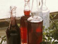 Schlehen-Gewürz-Saft Rezept