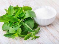 Das sollten Sie über Stevia wissen