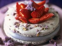 Violette Veilchen-Macarons Rezept