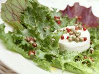 Ziegenkäse mit Pfeffer-Vinaigrette auf Blattsalat Rezept