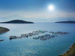 Aquakultur in Griechenland