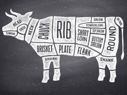 Teile einer Kuh